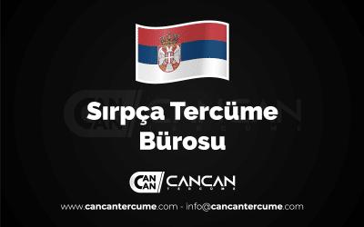 sırpca_tercume_burosu