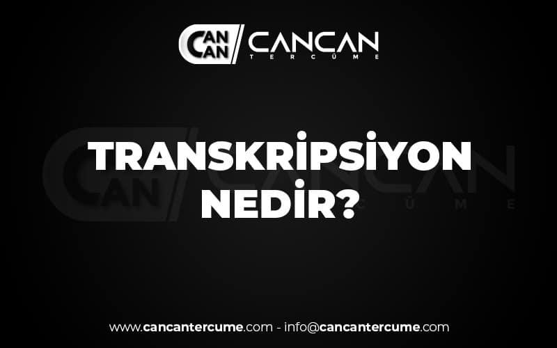 Transkripsiyon Nedir ?